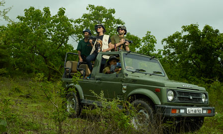 4 x 4 Jeep Safari