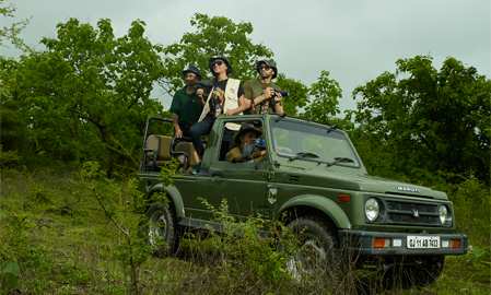 Gir National Park Safari